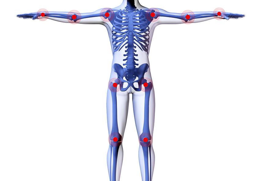 Заболевания и лечение суставов анаптомические структуры характеризующие сустав