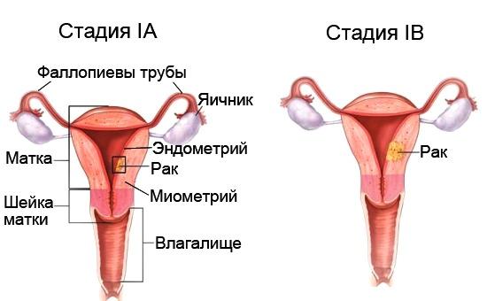 sperma-gruppovoy-minet